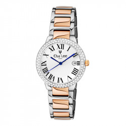Elsa Lee Paris watch for women, with silver and gold steel strap, silver case filled with Cubic Zirconia