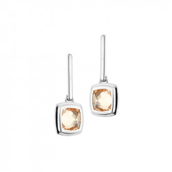 Elsa Lee Paris dangling sterling silver earrings with 2 close set champagne Cubic Zirconia
